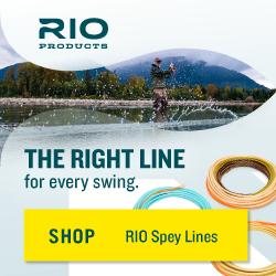 RIO_Swing_250x250
